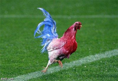Photo of ما هو لقب المنتخب الفرنسي