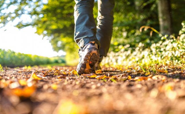 صور فوائد المشي نصف ساعه