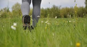 فوائد المشي في انقاص الوزن