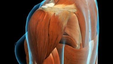 Photo of علاج التمزق العضلي في الكتف